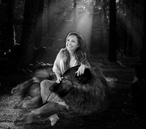 Nessie & wolf