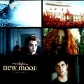 New Moon images - twilight-series photo