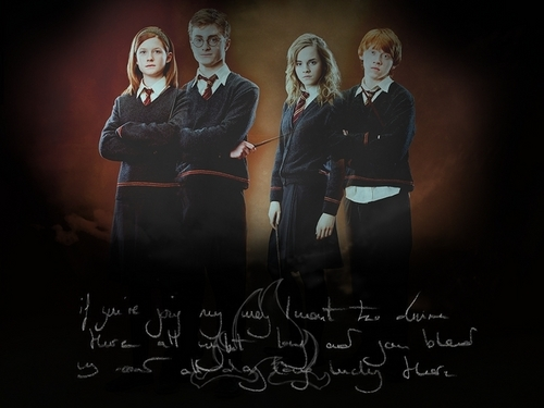 Ron, Hermione, Harry, and Ginny