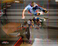 Ryan Sheckler - ryan-sheckler wallpaper