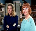 Samantha and Endora - elizabeth-montgomery photo