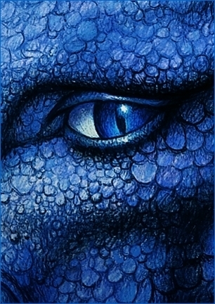http://images2.fanpop.com/images/photos/7600000/Saphira-eragon-7659533-306-432.jpg