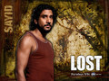 Sayid - Lost wallpaper - sayid-jarrah wallpaper