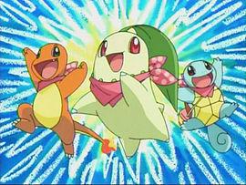 Team Pokémon!