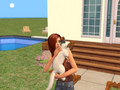 sims2 - the-sims-2 photo