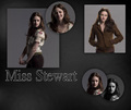 wallpaper - twilight-series photo