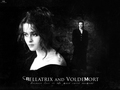 Bella and Voldemort - bellatrix-and-lord-voldemort wallpaper