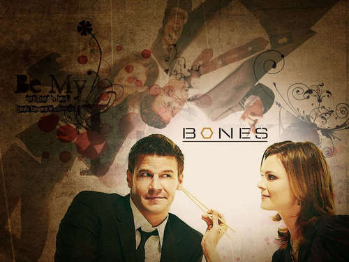 Booth &amp; Bones &lt;3 - seeley-booth Fan Art