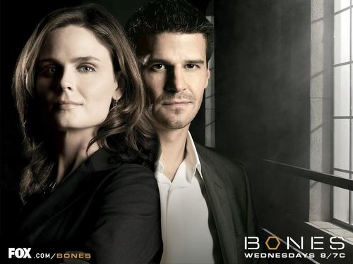 Seeley Booth karatasi la kupamba ukuta containing a portrait and a well dressed person called Booth & Bones <3