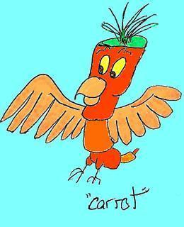 Carrot-Parrot