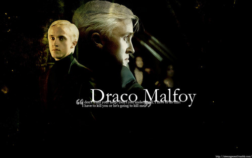 Harry Potter fond d'écran titled Draco Malfoy