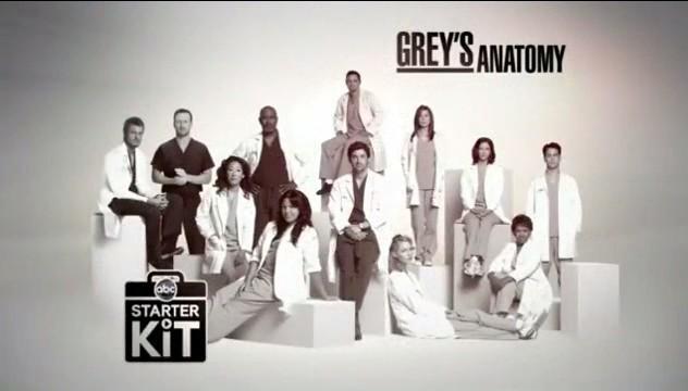 Grey's Anatomy 6ª Temporada – HDTV Dublado Torrent Download (2010)