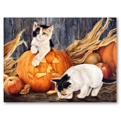 हैलोवीन बिल्ली के बच्चे