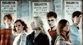 Hermione, Ron, Luna, Ginny, Harry, & Neville
