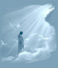 Jesus In Heaven - jesus Photo