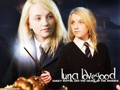 Luna Lovegood - luna-lovegood wallpaper