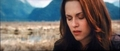 New Moon trailer stills in HD :) - twilight-series photo