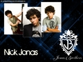 Nick Wallapaper - nick-jonas wallpaper