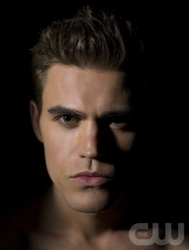 Paul Wesley wallpaper containing a portrait entitled Paul Wesley/Stefan Salvatore