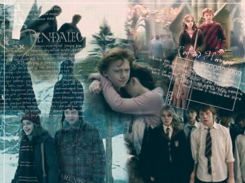 Ron and Hermione - harry-potter wallpaper