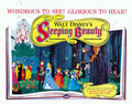 Sleeping Beauty Movie Poster - sleeping-beauty fan art
