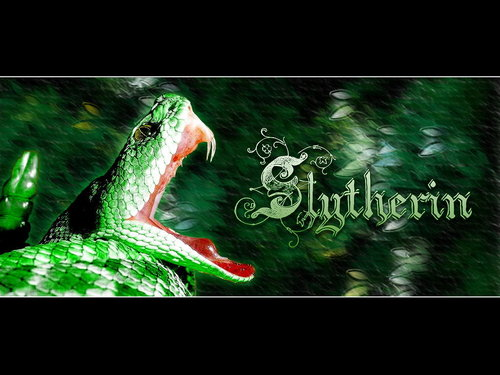 Slytherin  - slytherin Wallpaper