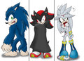 So, what's next? - sonic-shadow-and-silver photo