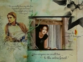 TWILIGHT ROX - ginny-and-harry-v-bella-and-edward wallpaper