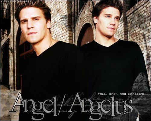 angel/angelus