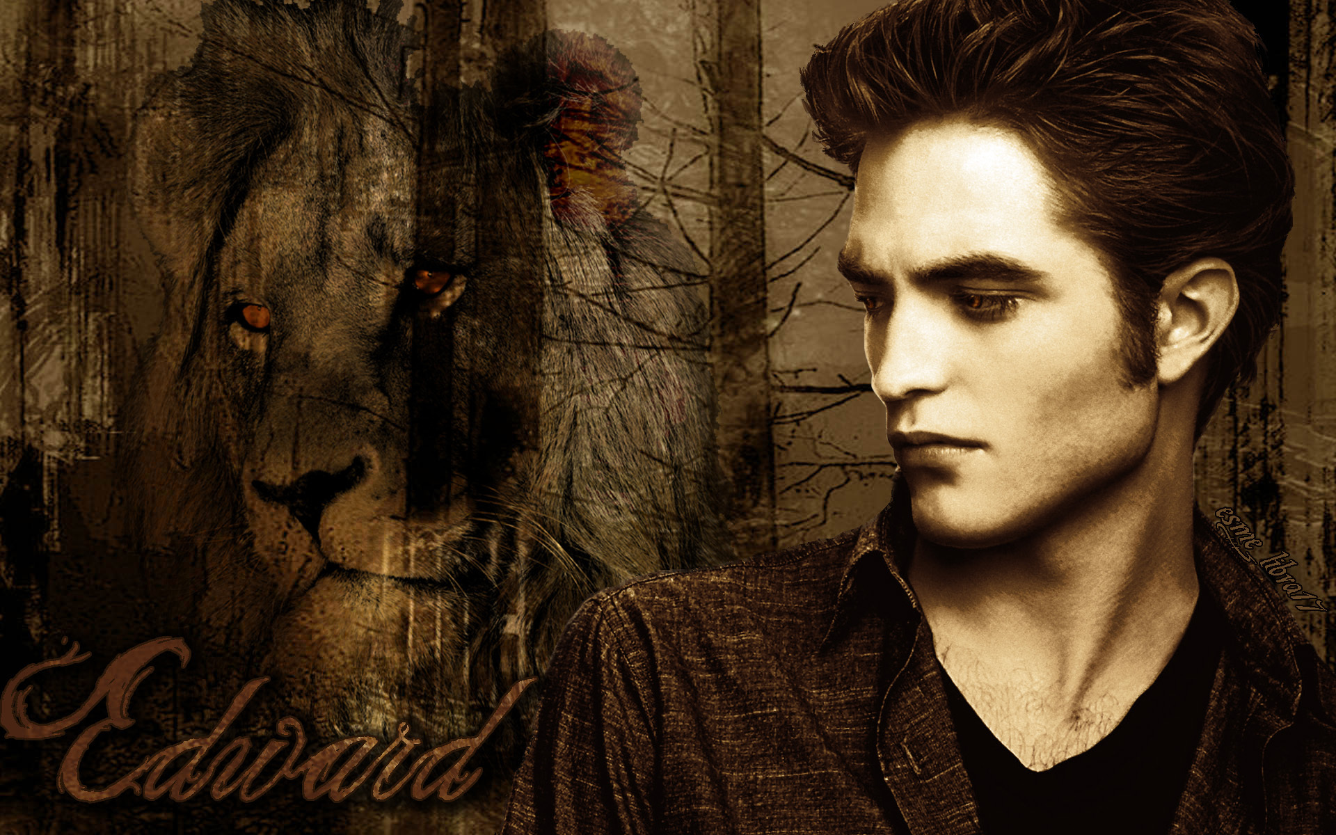 Pin edward crepusculo on pinterest for Twilight edward photos