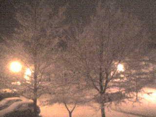 snow fall at night