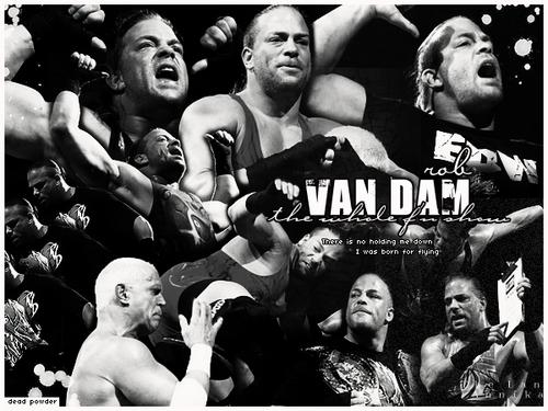 wrestling graphics i made <3
