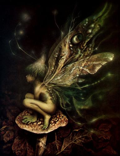 A Fairy Portrait