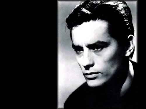 알랭 들롱 바탕화면 probably containing a portrait entitled Alain Delon