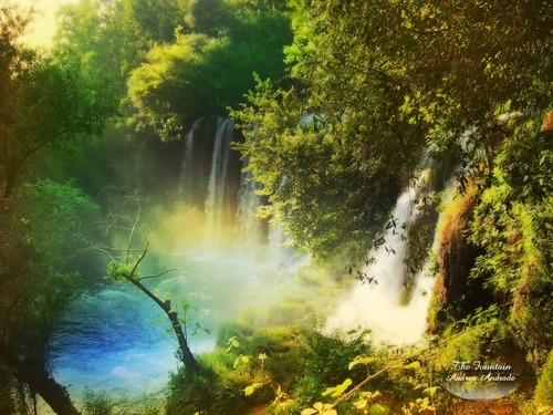 National Geographic wallpaper with a riparian forest entitled Amazing Nature Wallpapers