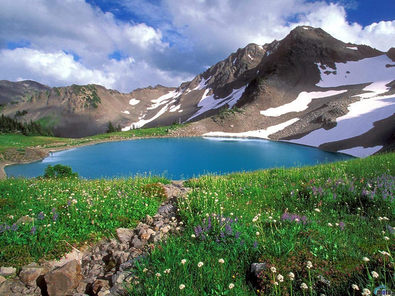 Amazing Nature Обои