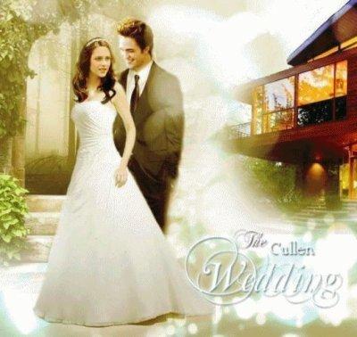 http://images2.fanpop.com/images/photos/7800000/Bella-wedding-dress-twilight-series-7858349-400-378.jpg