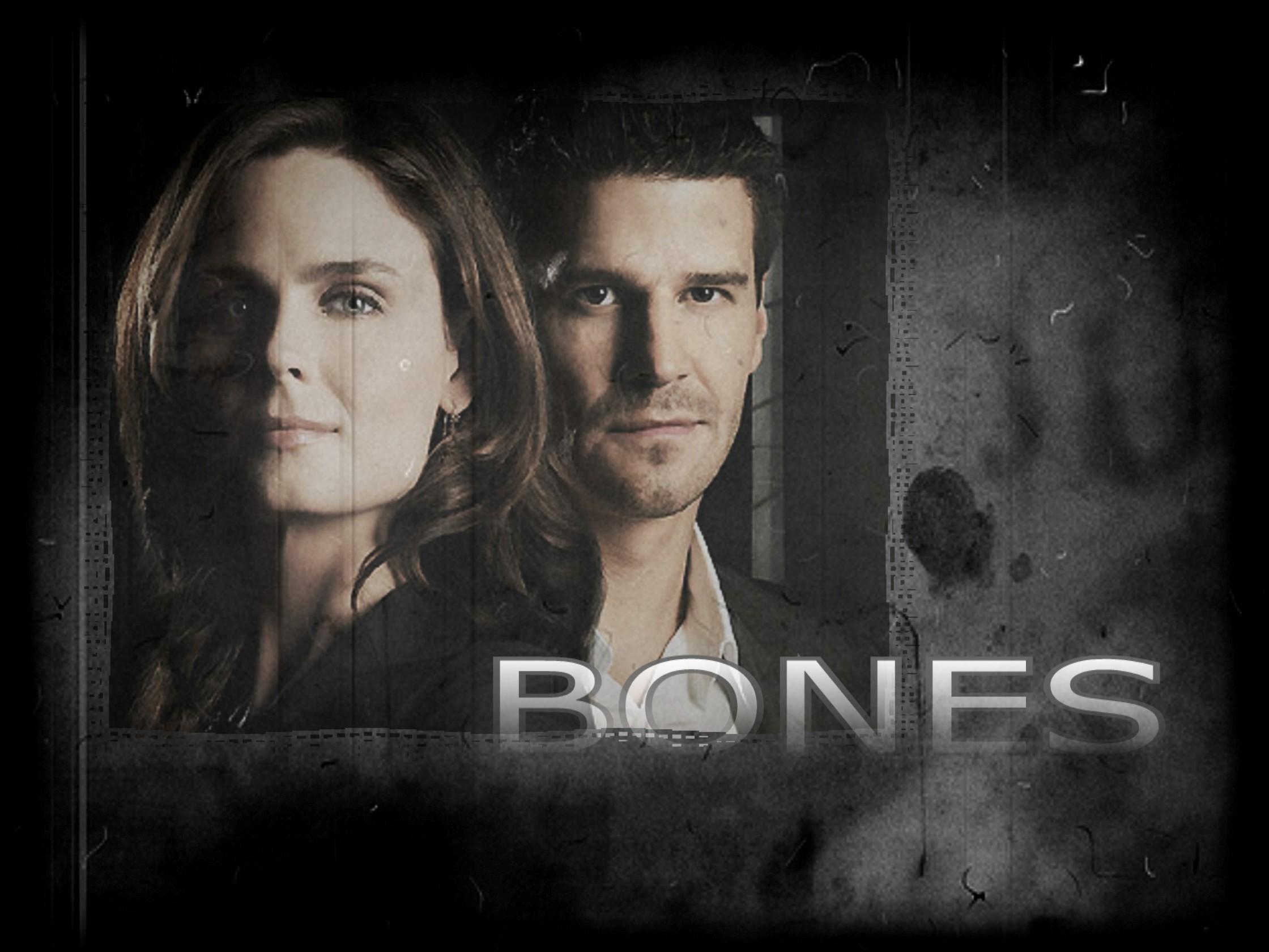 bones bones wallpaper 7882856 fanpop