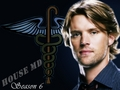 Chase season 6 - jesse-spencer wallpaper