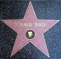Donald Duck's étoile, star on the Walk of Fame