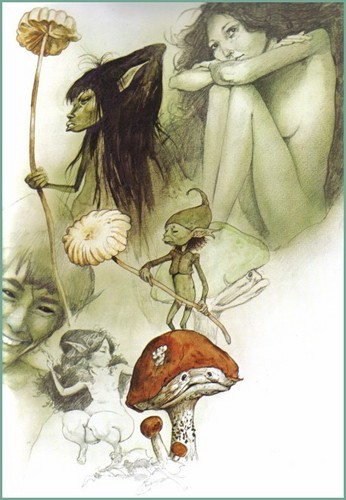 Faeries - Brian Froud