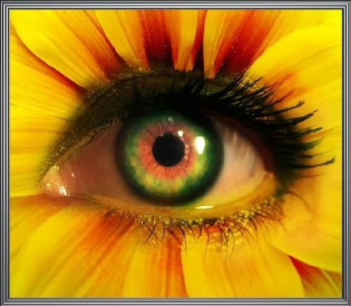 flor eyes