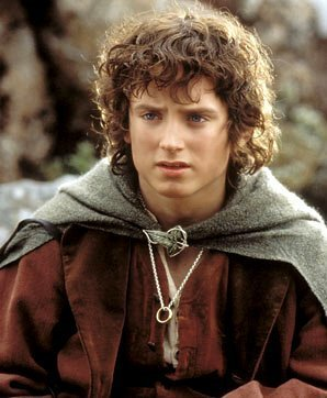 essay on frodo baggins in fellowship of the ring