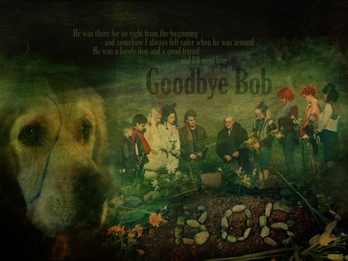 Goodbye Bob