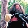 Petición de los Personajes Cannon - Página 2 Hagrid-and-Draco-harry-potter-7835477-100-100