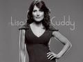 Lisa Cuddy Wall