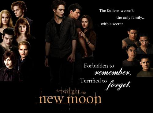 My New Moon Poster