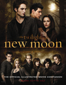 New Moon Poster - alice-and-bella photo