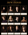 New Moon clandar and brazalet - twilight-series photo