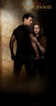 New official Jake and Bella photo what do you think? - twilight-series photo